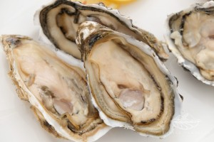 Royale Namibian Seafood Company - Oysters - Fermar Oysters march 2015_30
