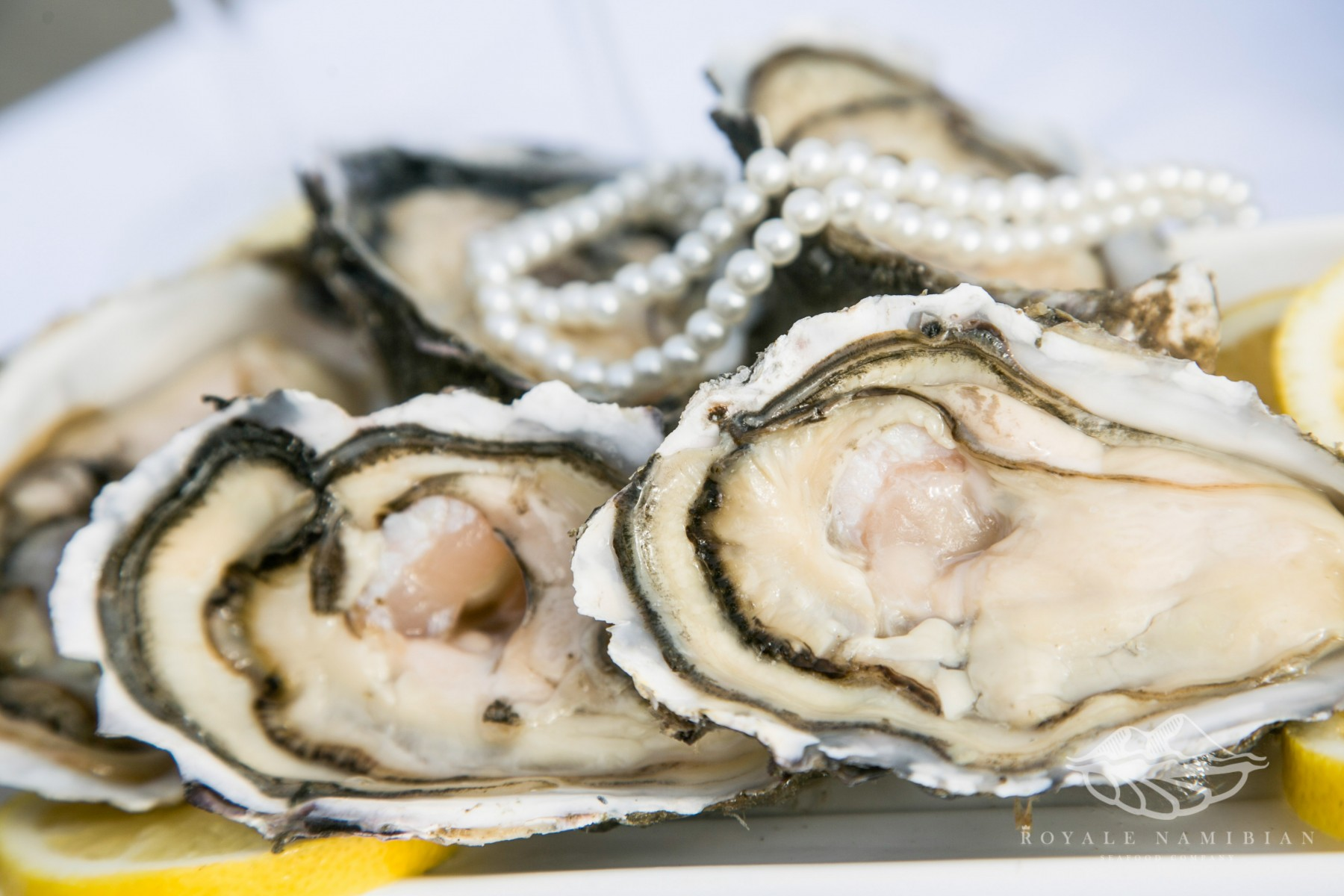 Royale Namibian Seafood Company - Oysters - Pearls - Fermar Oysters march 2015_58